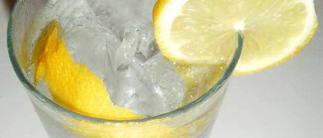 el marketing de las bebidas: la tónica y el gin tonic