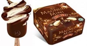 Frigo Magnum